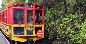 【京都旅遊】嵯峨野觀光小火車|溪谷、紅葉、鐵道交響曲