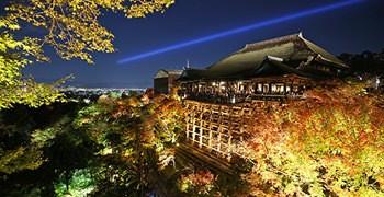 【京都旅遊】清水寺 夜楓|夜楓名所首選
