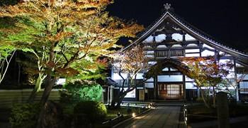 【京都旅遊】高台寺 夜楓|充滿詩意的紅葉倒映