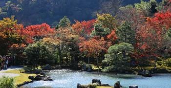 【京都旅遊】天龍寺|嵐山第一庭園池畔賞楓名所