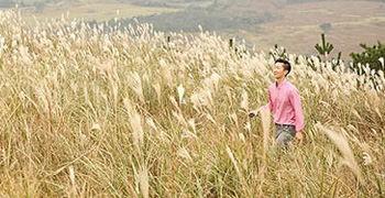 【濟州島旅遊】多羅非岳|小火山健行遇見紫芒花