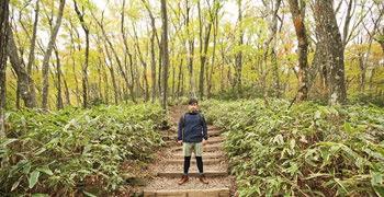 【濟州島旅遊】漢拿山|韓國第一高峰的楓紅秋景