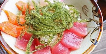 【沖繩美食】しらさ食堂 超狂海膽丼完售,但海葡萄滿滿的海鮮丼也好吃!